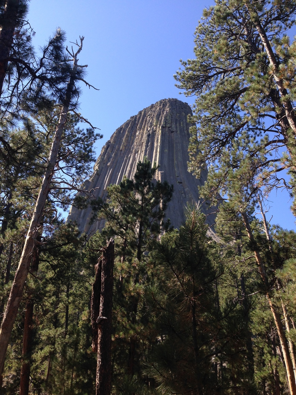 Devil's Tower National Monument, Wyoming (photo: Melanie Rice)