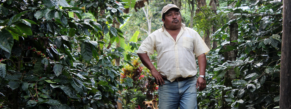 MEET OUR COFFEE PRODUCERS.