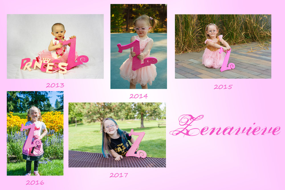 Zenavieve's Z Years 1-5.jpg
