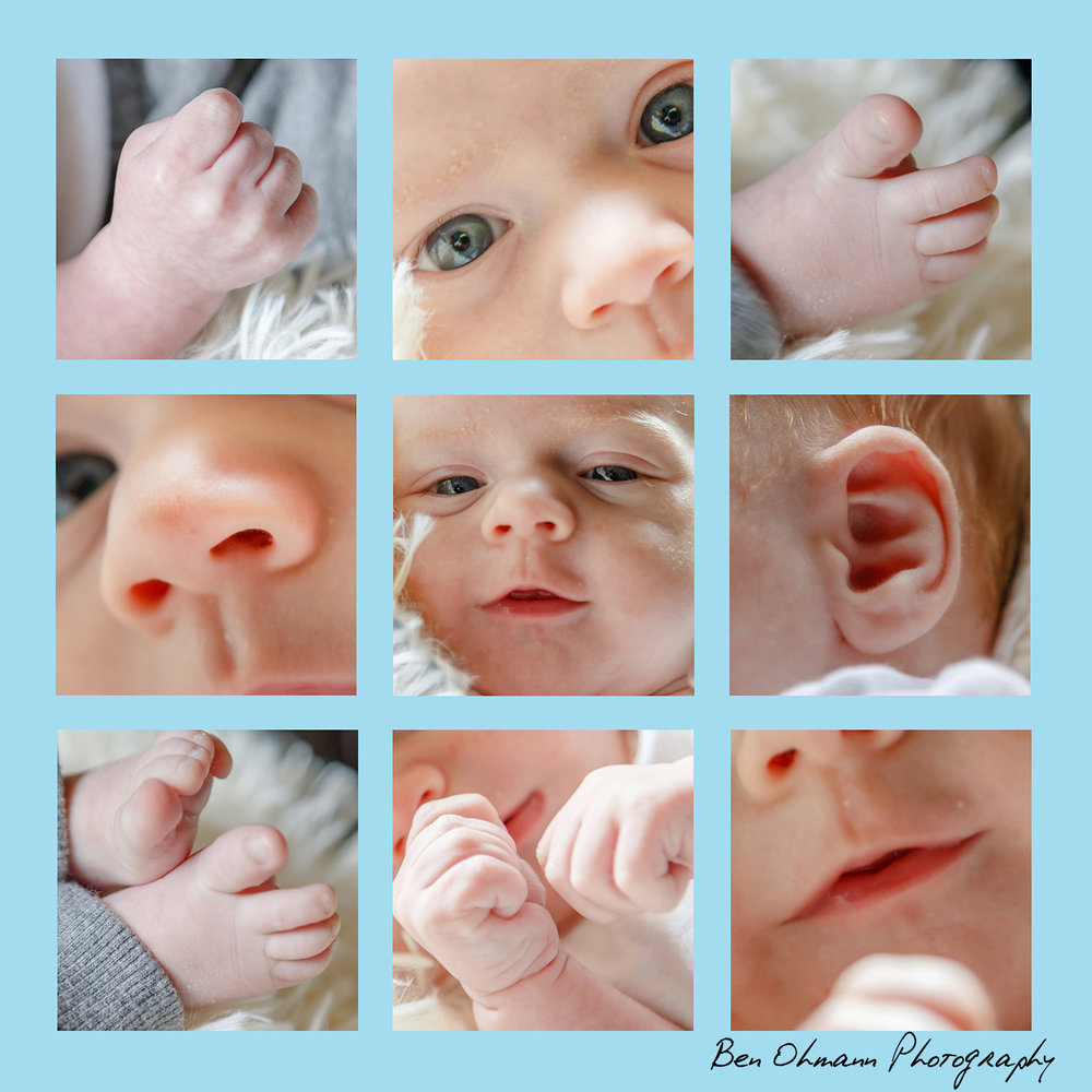 Berger Baby Parts Collage.jpg
