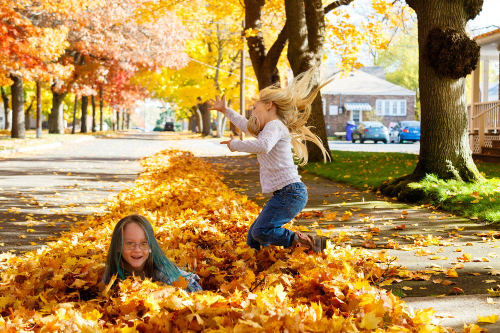 Kids in Leaves -20171027_002.jpg