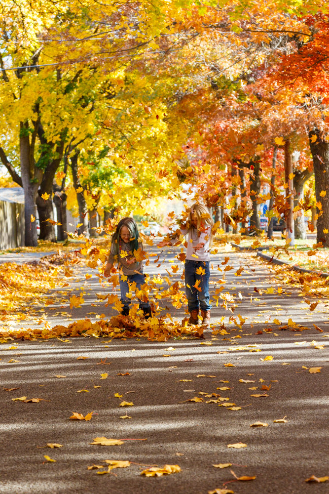 Kids in Leaves -20171027_019.jpg
