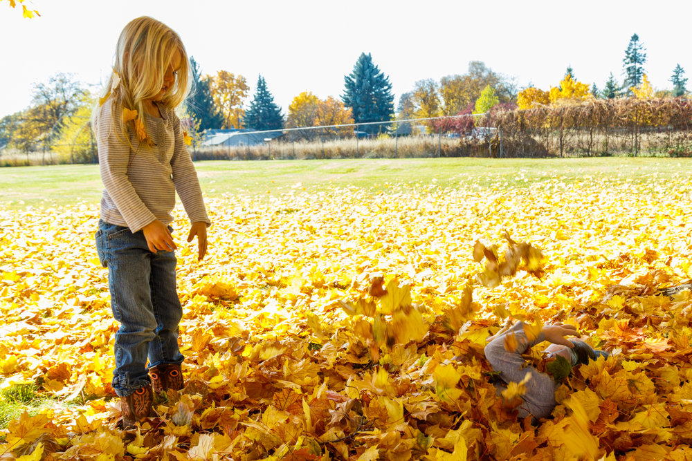 Kids in Leaves -20171027_074.jpg