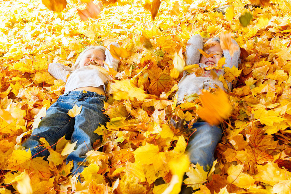 Kids in Leaves -20171027_072.jpg