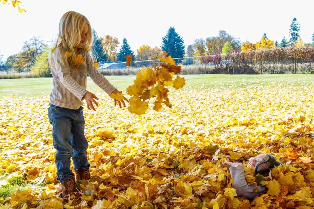 Kids in Leaves -20171027_073.jpg