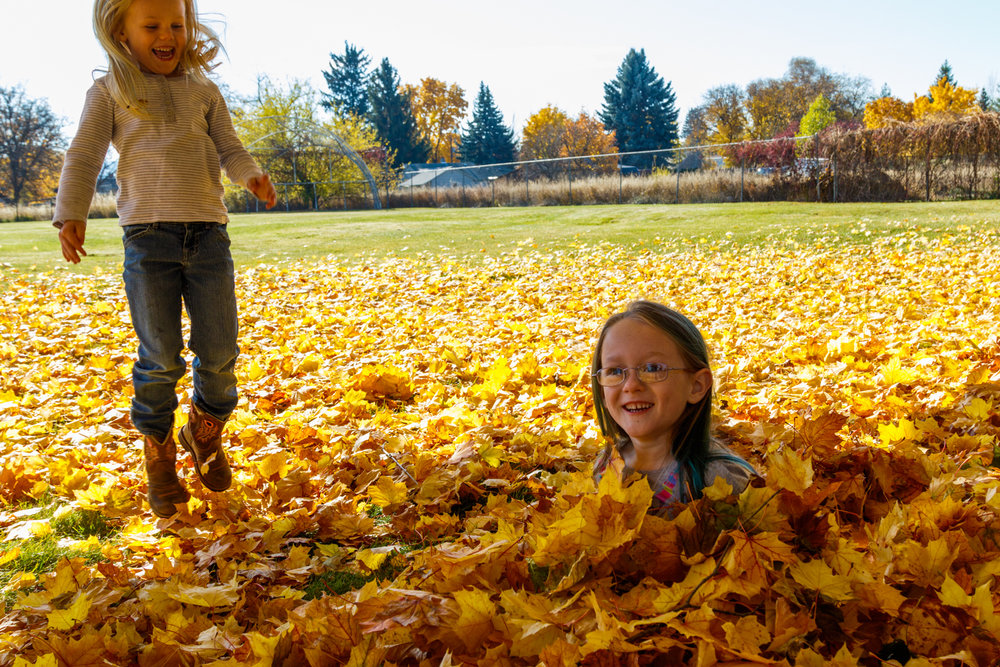 Kids in Leaves -20171027_079.jpg