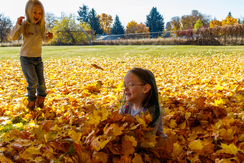 Kids in Leaves -20171027_081.jpg