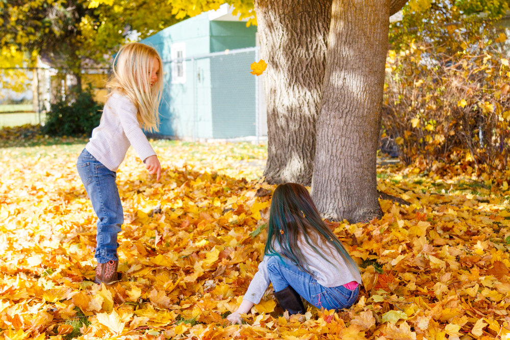 Kids in Leaves -20171027_082.jpg