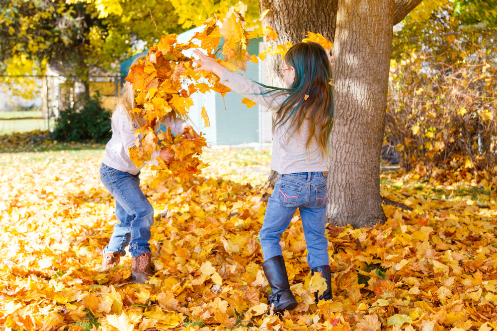 Kids in Leaves -20171027_083.jpg