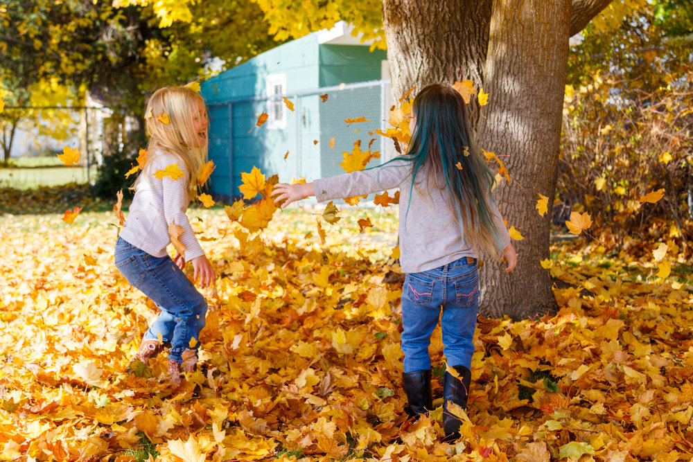 Kids in Leaves -20171027_084.jpg