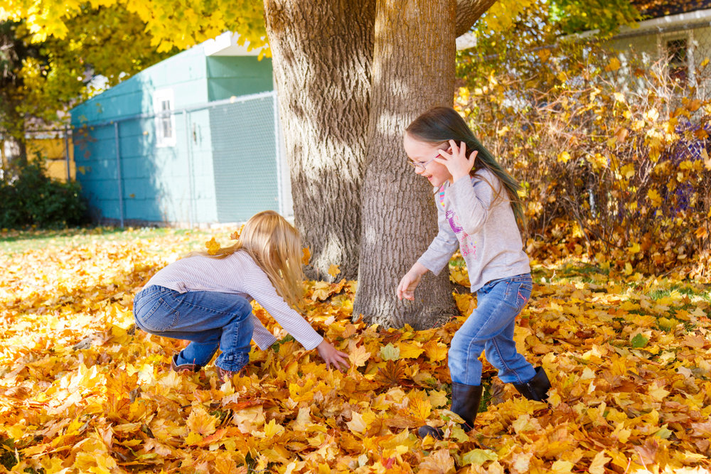 Kids in Leaves -20171027_085.jpg