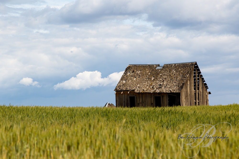 Douglas County Adventure-20180616_238.jpg