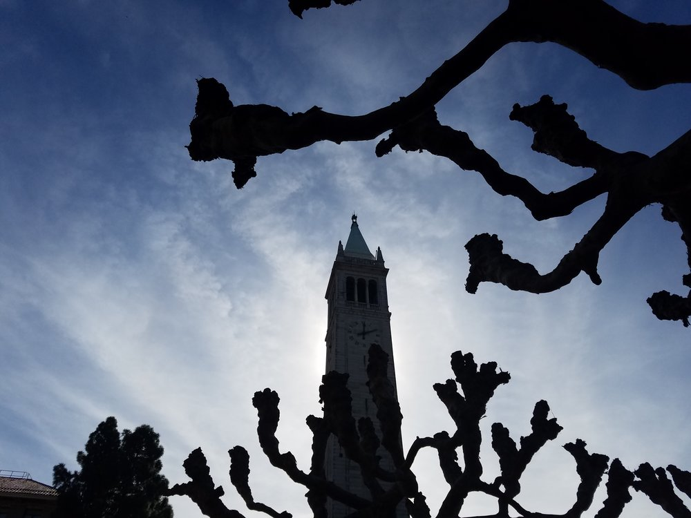 The Campanile (Sather Tower), Berkeley, CA Feb 2018
