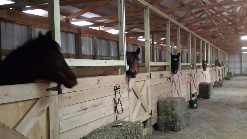 Indoor arena stalls