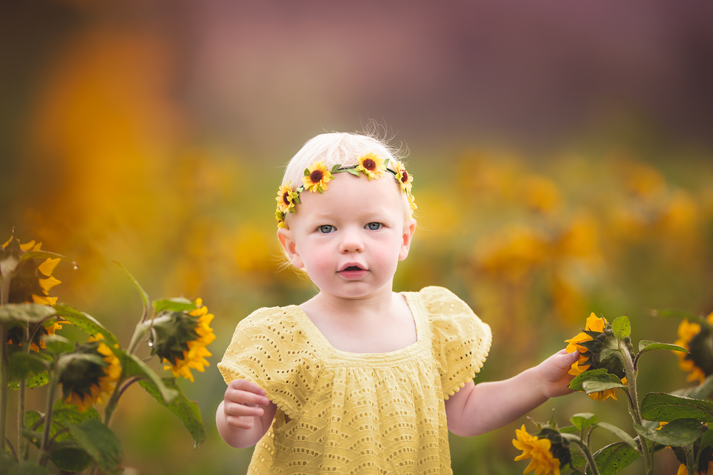 Eloise Sunflower-007-Edit.jpg
