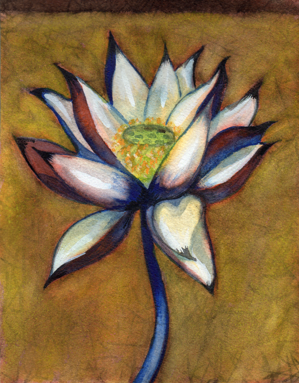 small lotus 8 .png
