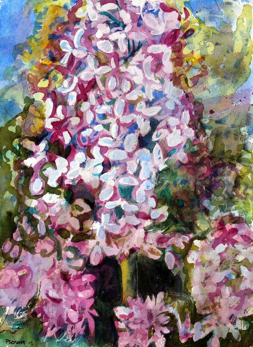"When Lilacs Last in the Dooryard Bloom'd Watercolor on Arches Paper  15"" x 11""  © Steven Plount"