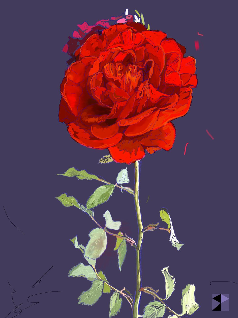 "Red Red Rose   Electronics Painting, iPad, Procreate, Pencil 53,  Photoshop. © 2016 dimensions variable to 48"" x 60""  giclee limited edition prints available contact the artist"