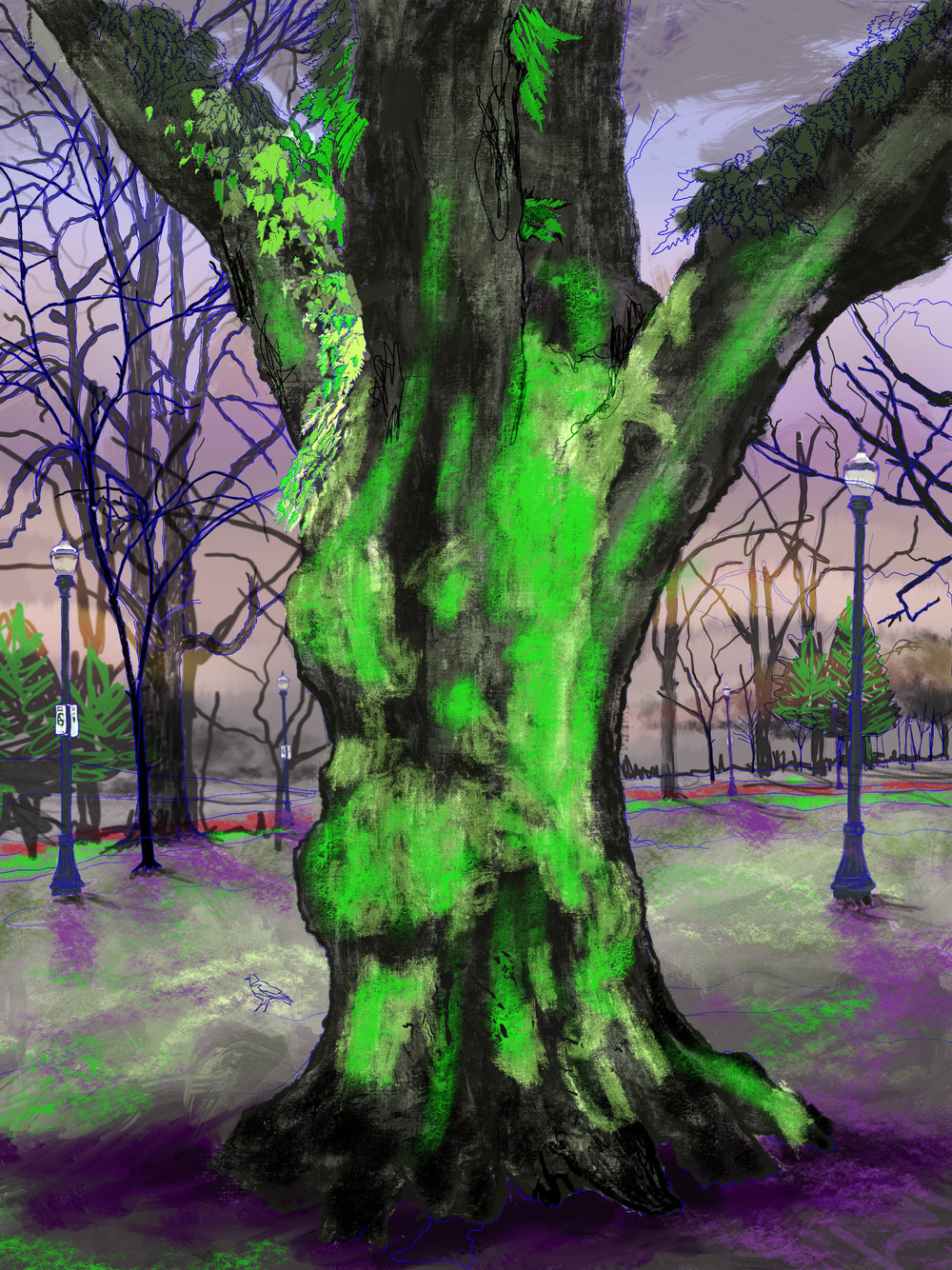 "Giant Moss Covered Tree, 3, North Park Blocks. Portland, OR   19""x13"", (48.26x33.02cm) Dimensions Variable   Electronics Painting, iPad, Procreate, © 2017"