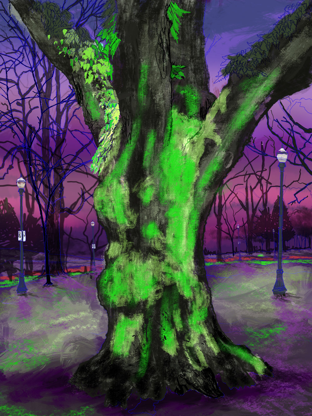 "Giant Moss Covered Tree, 4, North Park Blocks. Portland, OR   19""x13"", (48.26x33.02cm) Dimensions Variable   Electronics Painting, iPad, Procreate, © 2017"