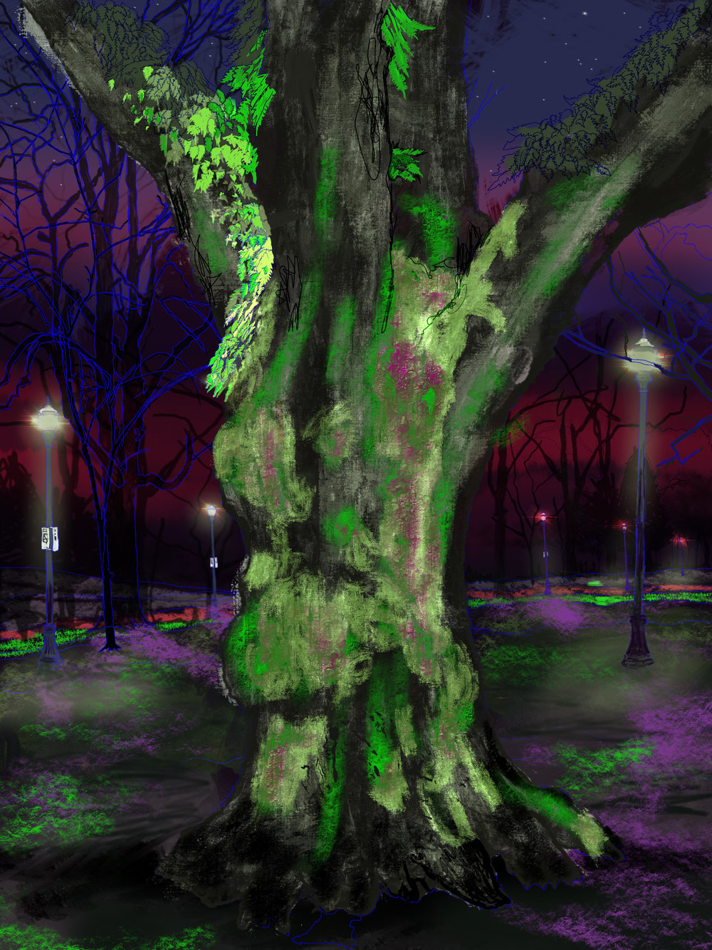 "Giant Moss Covered Tree, 5, North Park Blocks. Portland, OR   19""x13"", (48.26x33.02cm) Dimensions Variable   Electronics Painting, iPad, Procreate, © 2017"