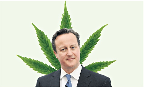 Will David Cameron play the cannabis card for the next general election? Photograph: PA/Alamy/Guardian montage