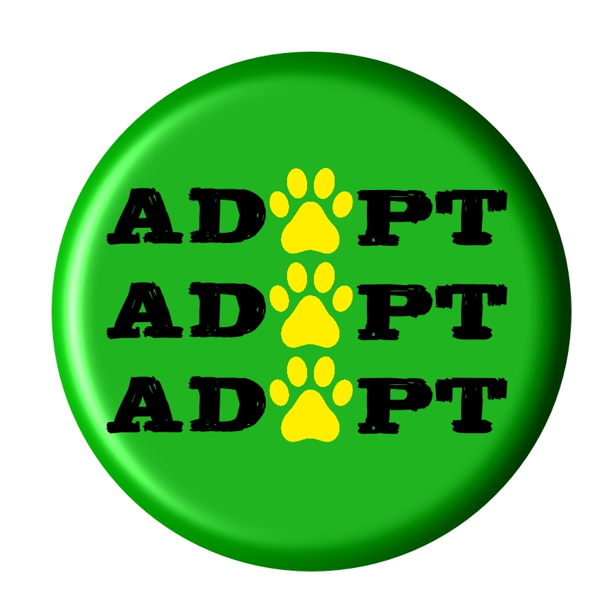 Badge encouraging the adopting pets