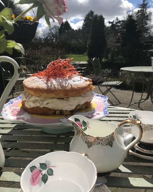 Rhubarb and custard cake on the patio #seasonal #sunny #traquairhouse #gardencafe