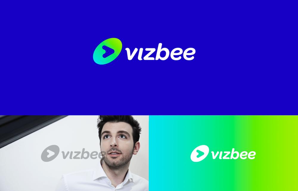 vizbee-logo-exploration.png