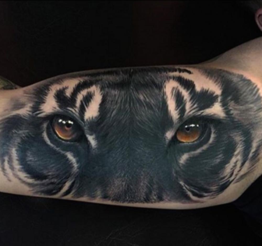 tiger1.png