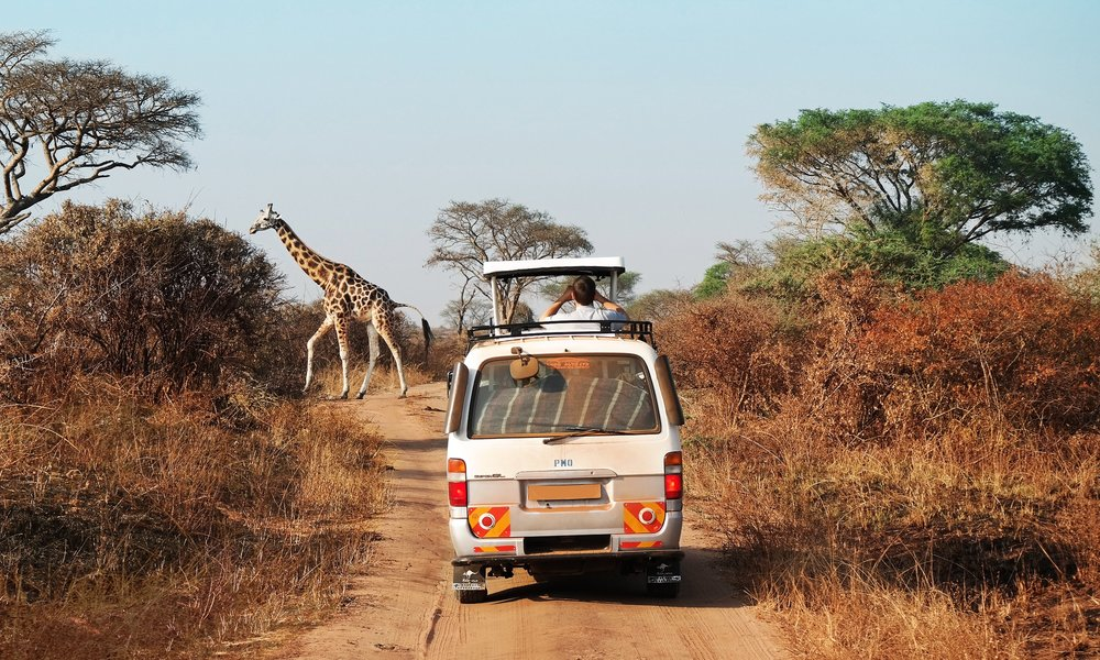 OVERNIGHT SAFARI IN WILDLIFE RESERVE  Explore one of South Africa's largest wildlife reserves on 2-day overnight safari and have close encounters with African animals in their natural habitat. Plus, support natural wildlife preservation with this eco-friendly tour.