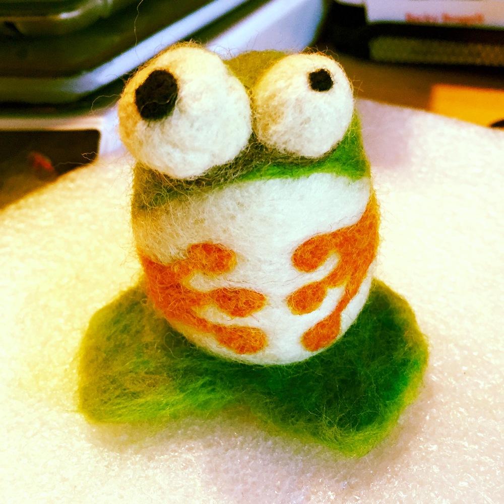 Meet herbert the shop frog