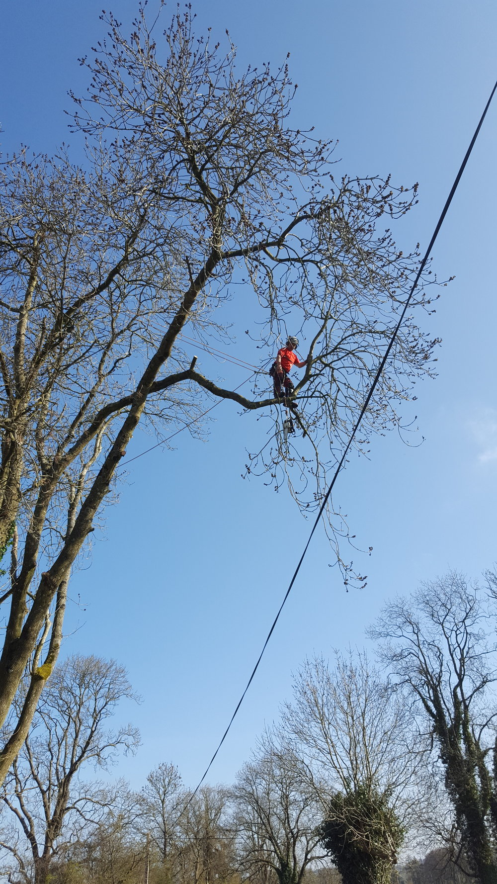 Karl climbing