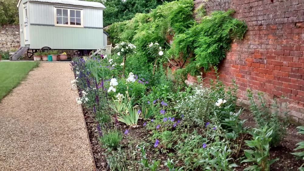 LAvenham Jane Taylors Cottage newly planted 1.jpg