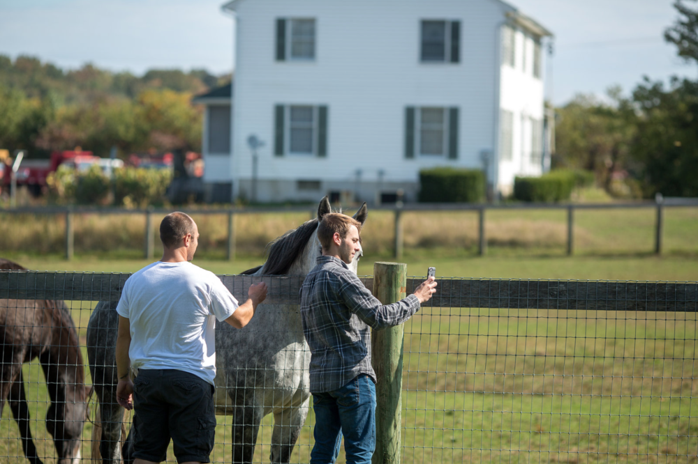 Take a selfie with a horse...if that's what you're into.