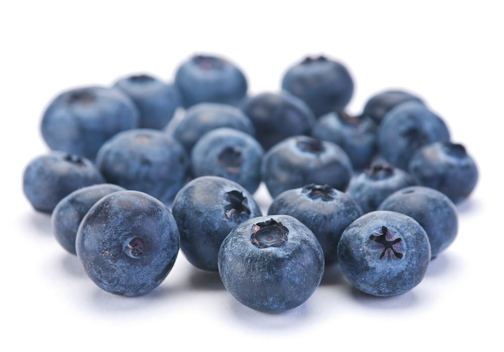 blueberries_05.jpg