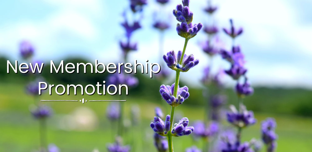 New Membership Promotion Ad Page Photo .jpg
