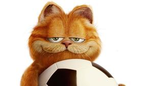 Garfield-HD-Wallpaper-Photos.jpg