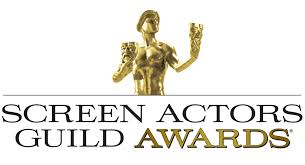 SCREEN ACTORS' GUILD AWARD NOMINATION   I was nominated with  The Good Wife  cast in the Outstanding Performance by an Ensemble in a Drama Series category at the 2011 SAG awards.