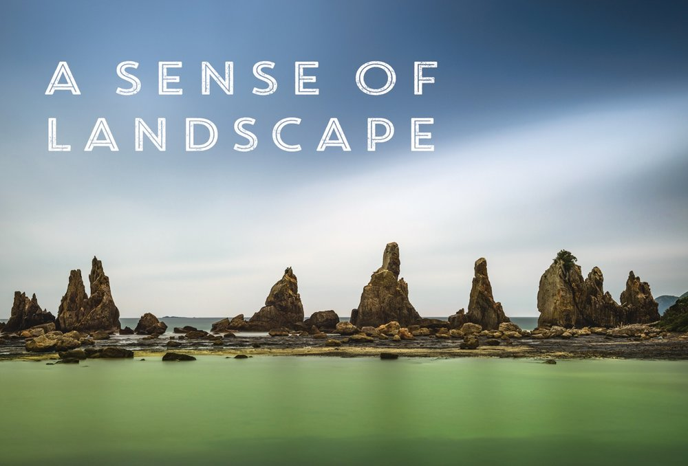 A sense of a landscape cover.jpeg