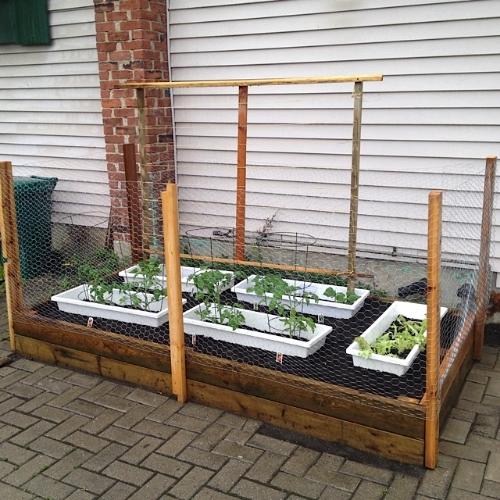 Papa Sams Seed Haven Demo Garden