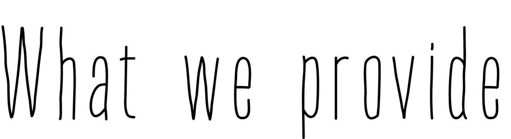 what-we-provide.jpg