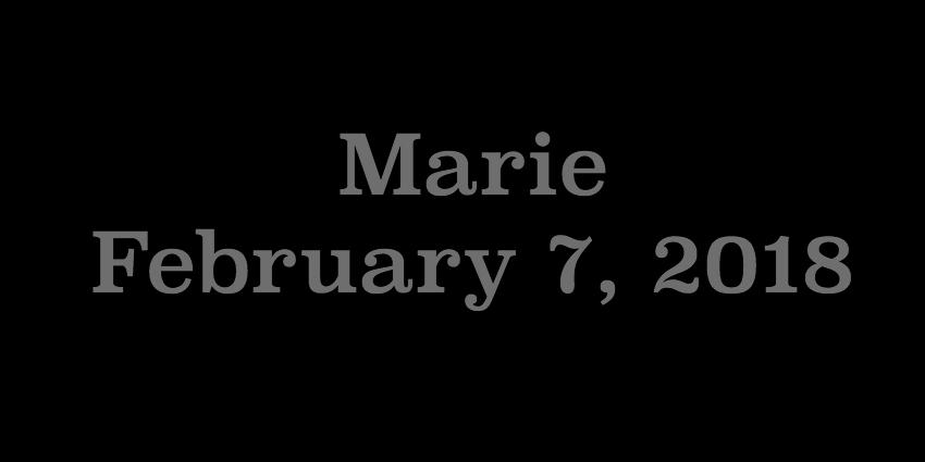 Feb 7 2018 - Marie.jpg