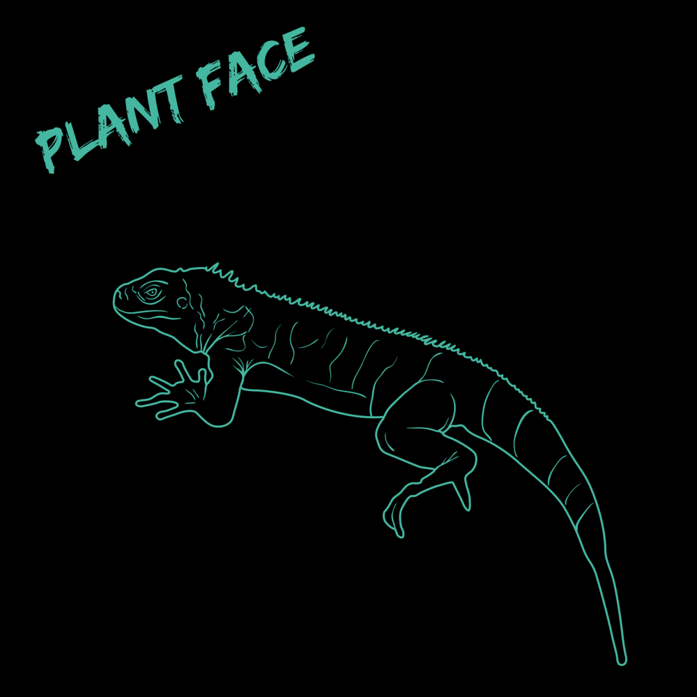 PLANT FACE-2.png