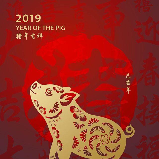 Happy Chinese New Year🧧 #yearofthepig
