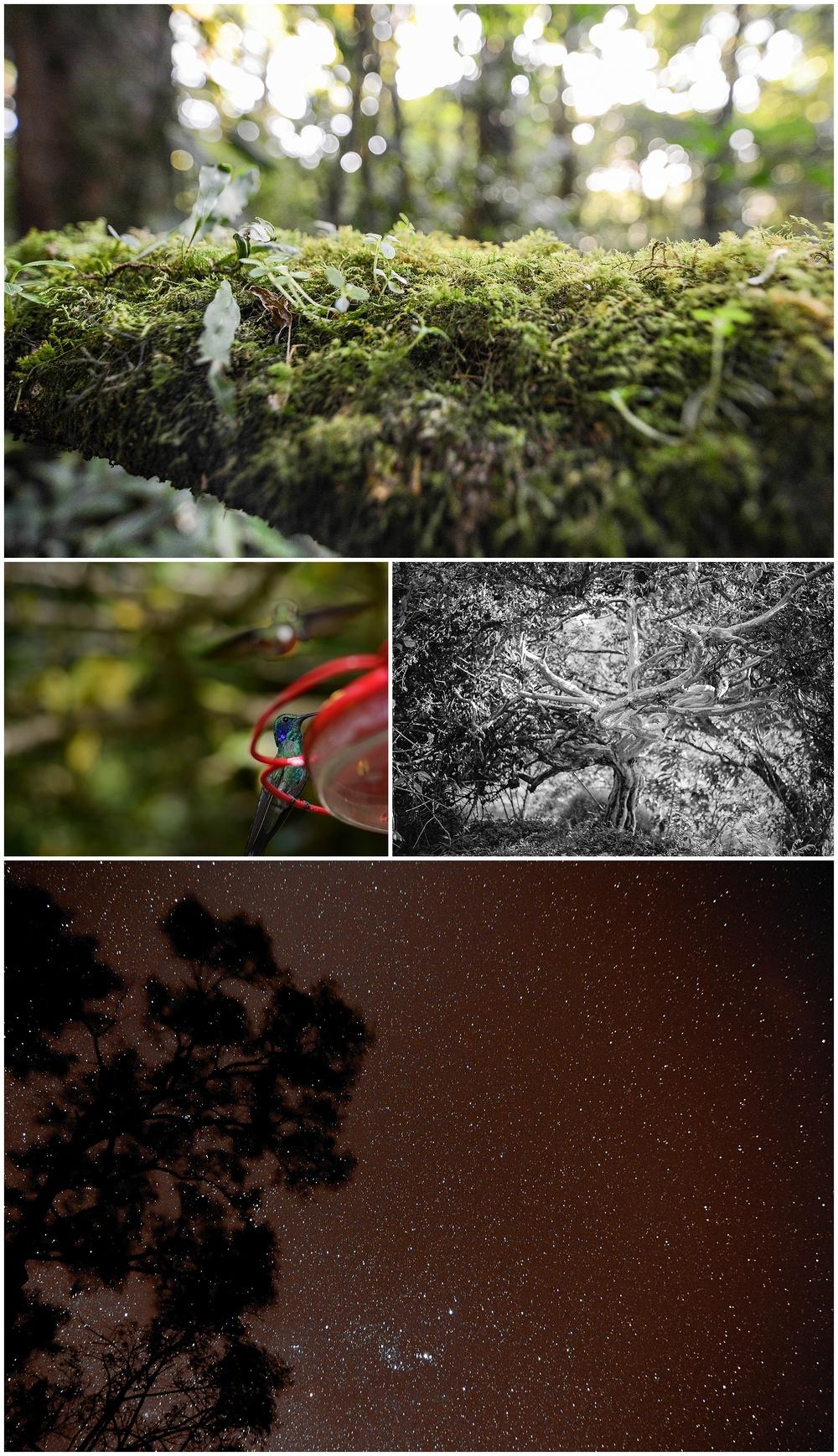 2014-10-21_0013.jpg