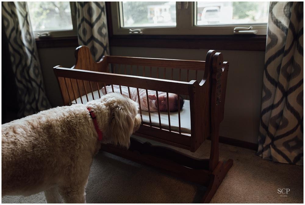 newborn lifestyle omaha bachmann-4905.jpg