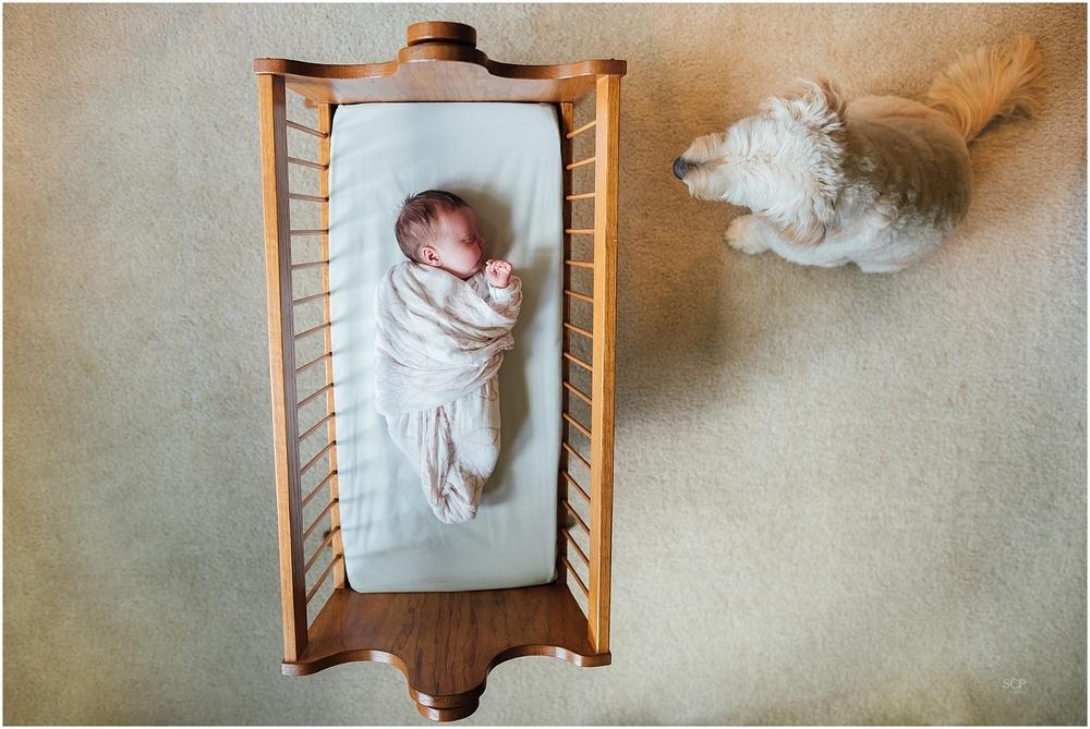 newborn lifestyle omaha bachmann-4915.jpg