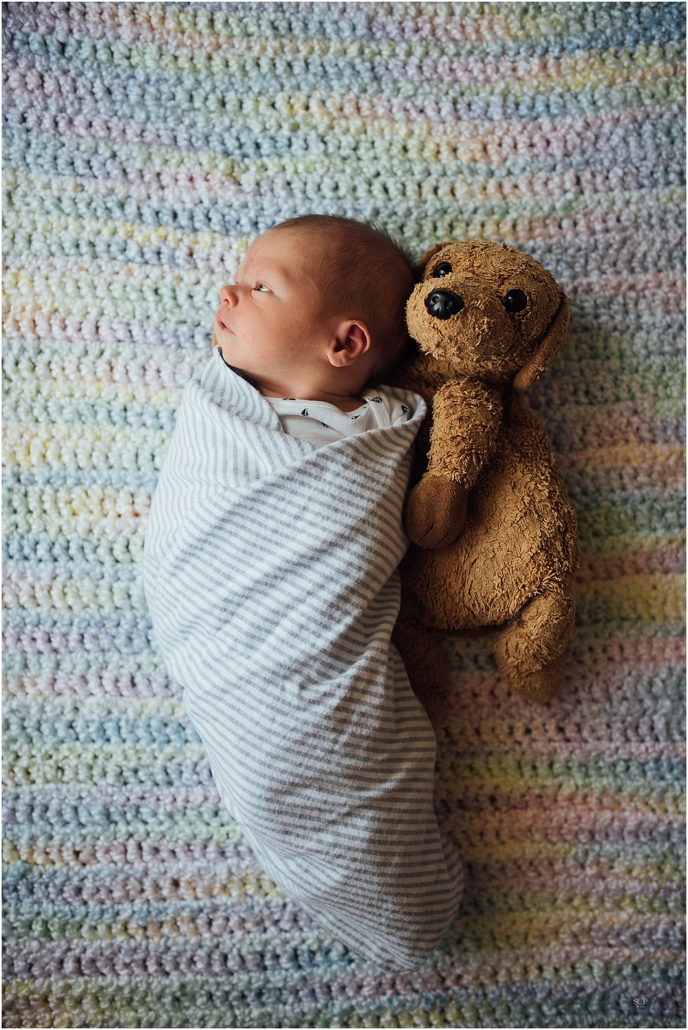 newborn lifestyle omaha gantz-6821.jpg