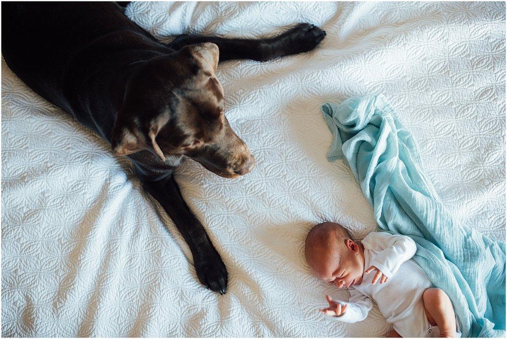 st louis newborn lifestyle paige rhett-5031.jpg